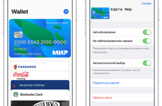 podderzhivaetsya li karta mir apple pay