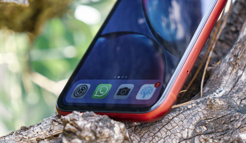 iphone xr stal samym populyarnym smartfonom v 2019 godu