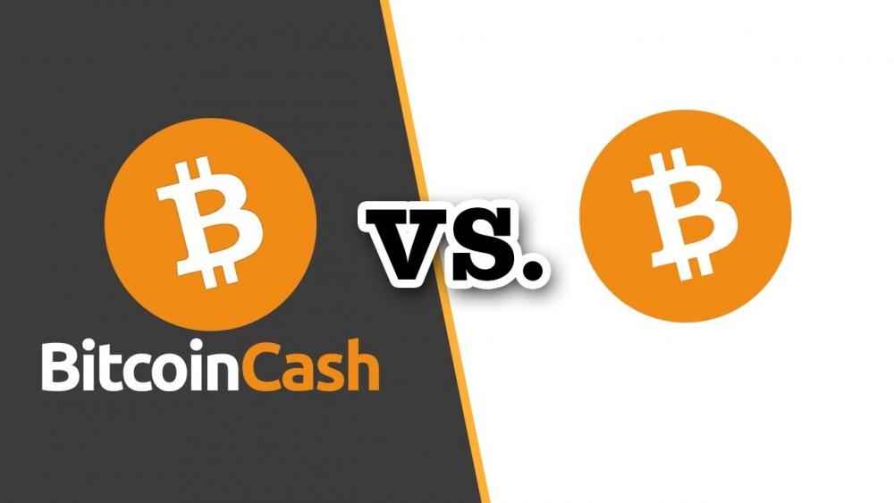 kriptovalyuta bitcoincash chto eto kurs na segodnya i gde vygodno kupit 1