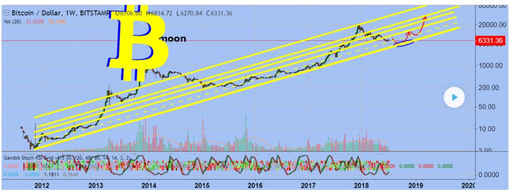 prognoz kursa bitkoina na 2019 god 1